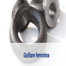 Golfare femmina