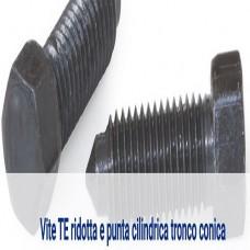 Vite TE ridotta e punta cilindrica tronco conica