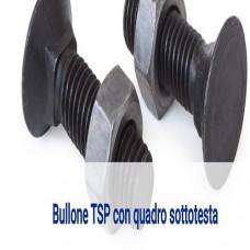 Bullone TSP con quadro sottotesta.