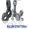 Bulloni strutturali